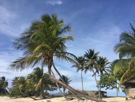 Caraibi 2018/19 alla vela