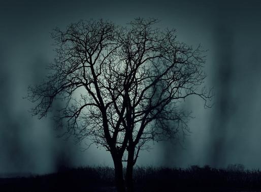 Balada da noite turva