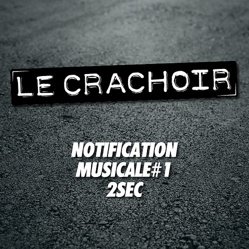 Notification musicale #1: 2 secondes