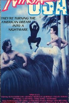 U.S.A. Ninja / Ninja in the U.S.A.