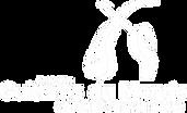 Logo_FGMAT_blanc.png