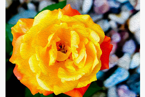 Yellow Rose - Irene Griego Collection