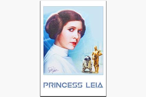 Princess Leia on metal