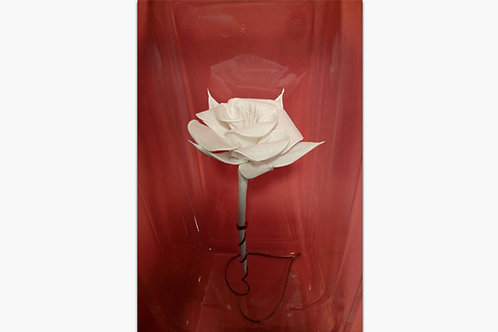 Rose Paper Napkins by Arnold Drake World