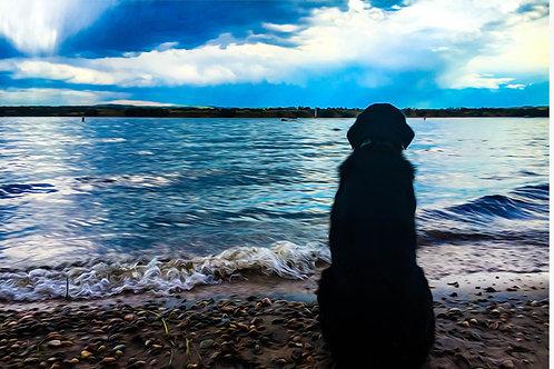 Max At The Lake