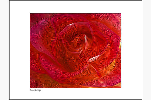 Red Rose - Irene Griego Collection