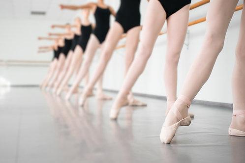 copy of Ballet Company Tee / 2018