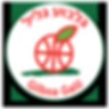 logo_Galil.png