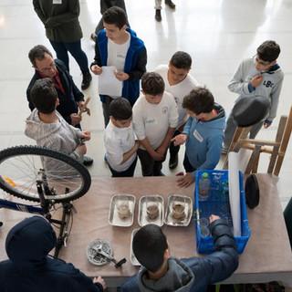 תלמידי תיכון זילברמן מבאר שבע.jpg