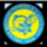logo_ashdod.png