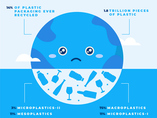 Can we really blame plastic for all the problems ?