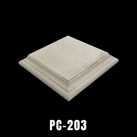 PC203.jpg