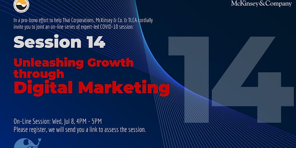 McKinsey & Co. Session 14: Unleashing Growth through Digital Marketing
