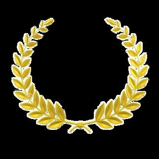 Trinity Award 2015.png