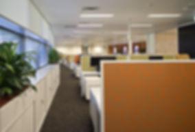 interior design adelaide, adelaide interior designers, corporate fitout, wine australia, industry house, wine, corporate fitout, studio tonic, interior designer, adelaide