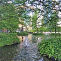 Warsaw Spire garden.jpg