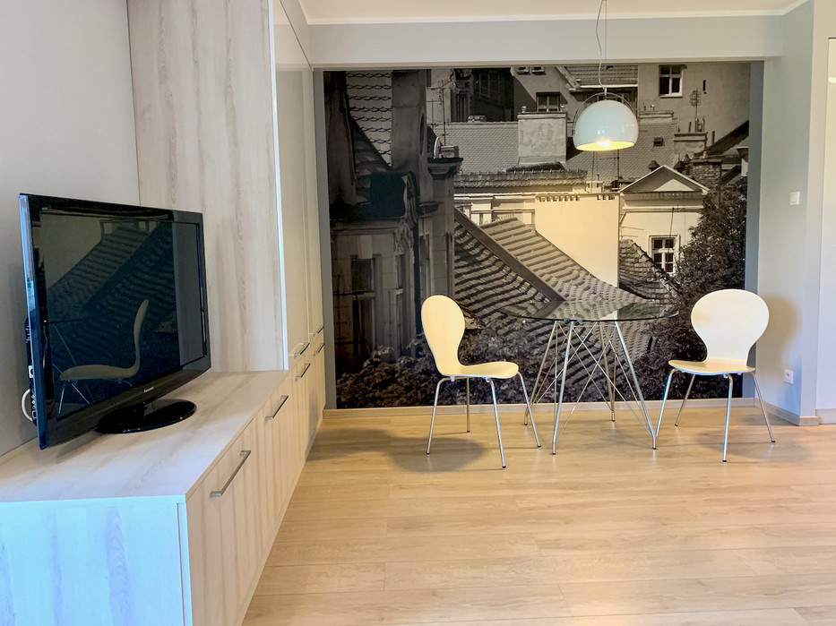 Poznan Mostowai flat for rent_4.jpeg