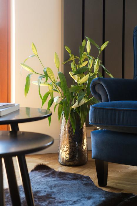 Poznan Dominikanska flat for rent_18.jpg