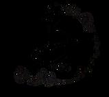 Basil-removebg-preview_edited.png