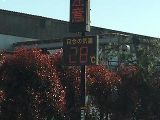 暑いで〜す