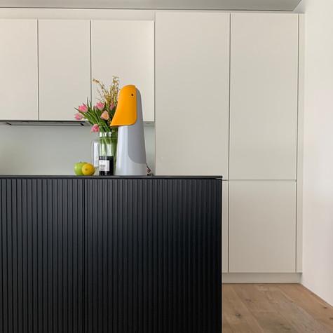 Farbgestaltung Küche Renovation Eigentumswohnung