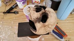 I took 2 old skulls I had from years