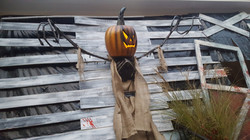 Pumpkin Sentinels