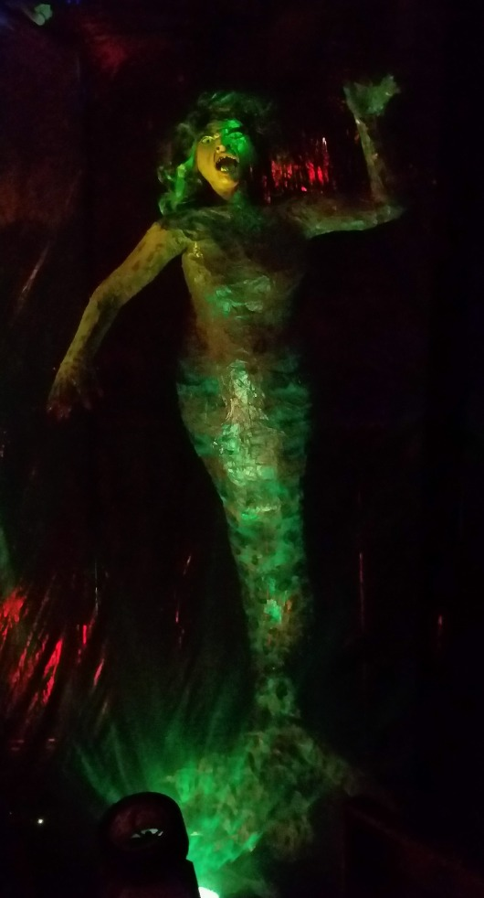 Pirate Halloween Mermaid