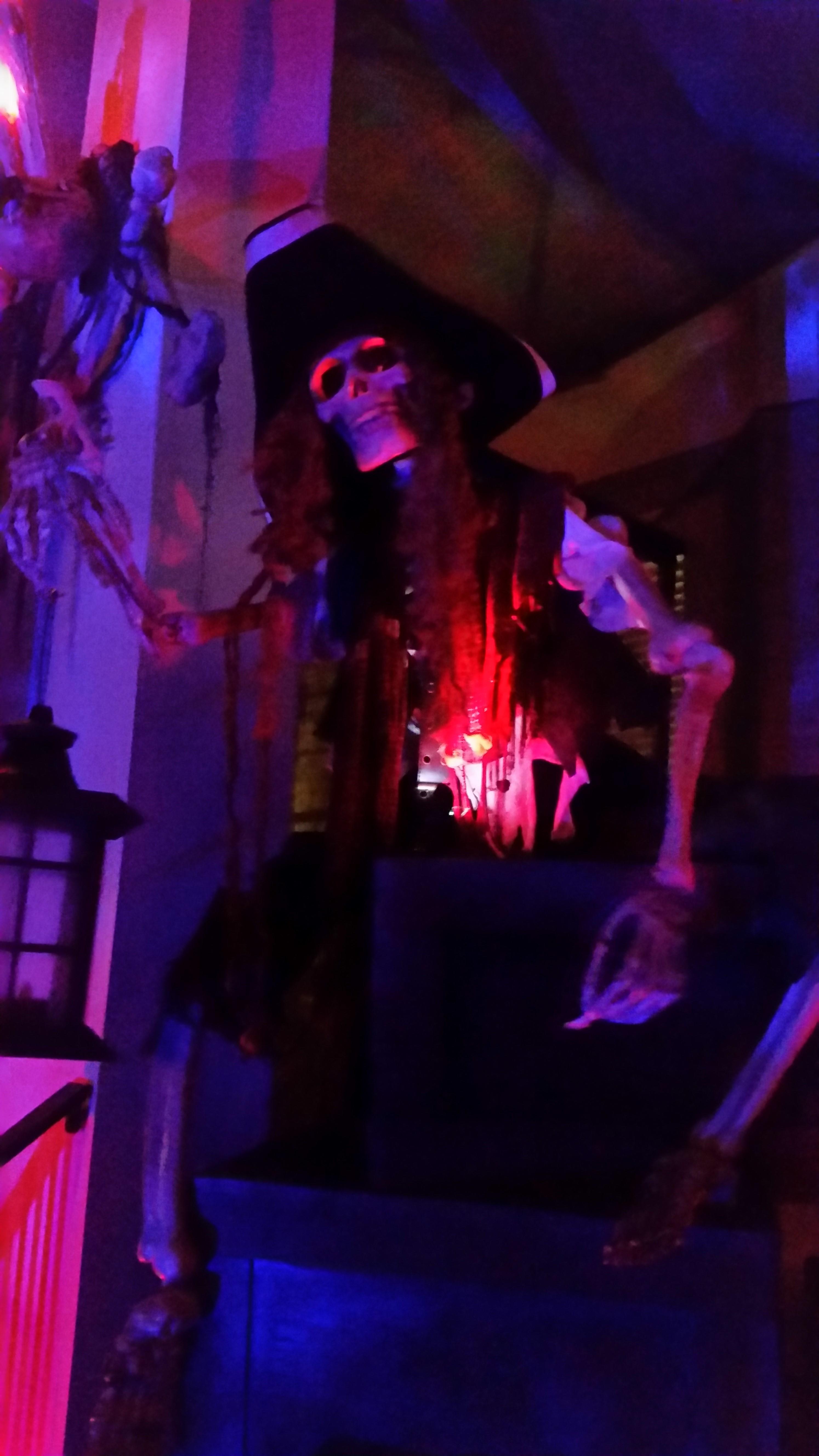 Pirate Halloween Skeleton