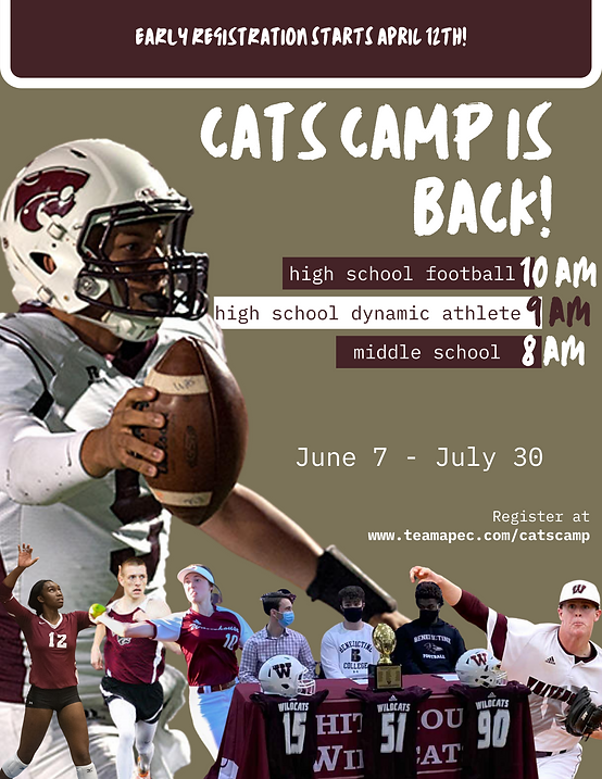 Cats Camp Template (5).png