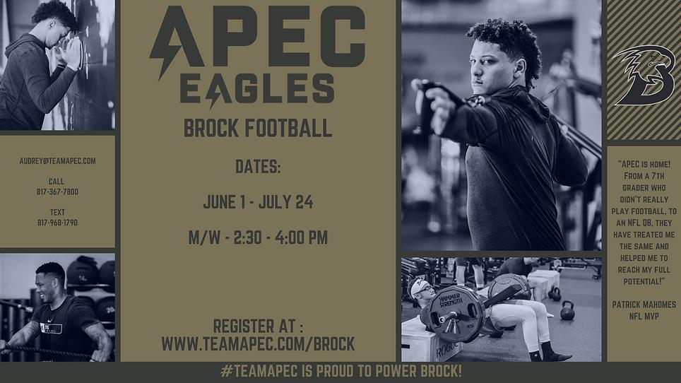 Brock Eagles.png