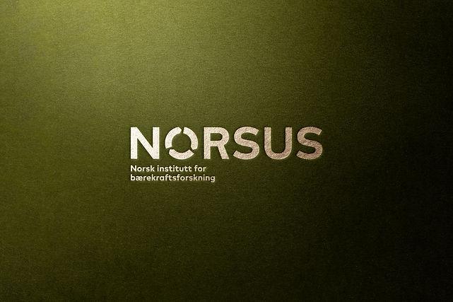 Norsus logo preg