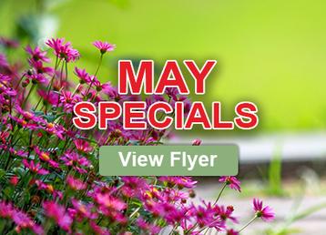 May Specials.