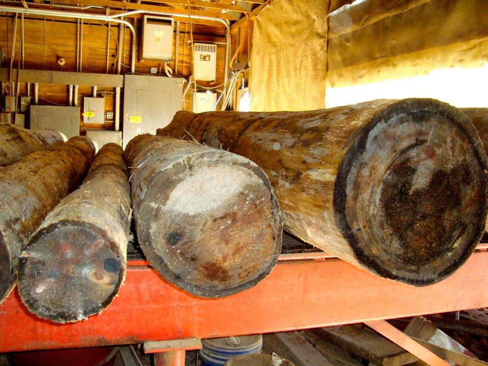 sawmill011