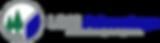 LBM Advantage logo