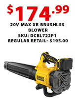 20V Max XR Brushless Blower