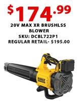 20V Max XR Brushless Blower