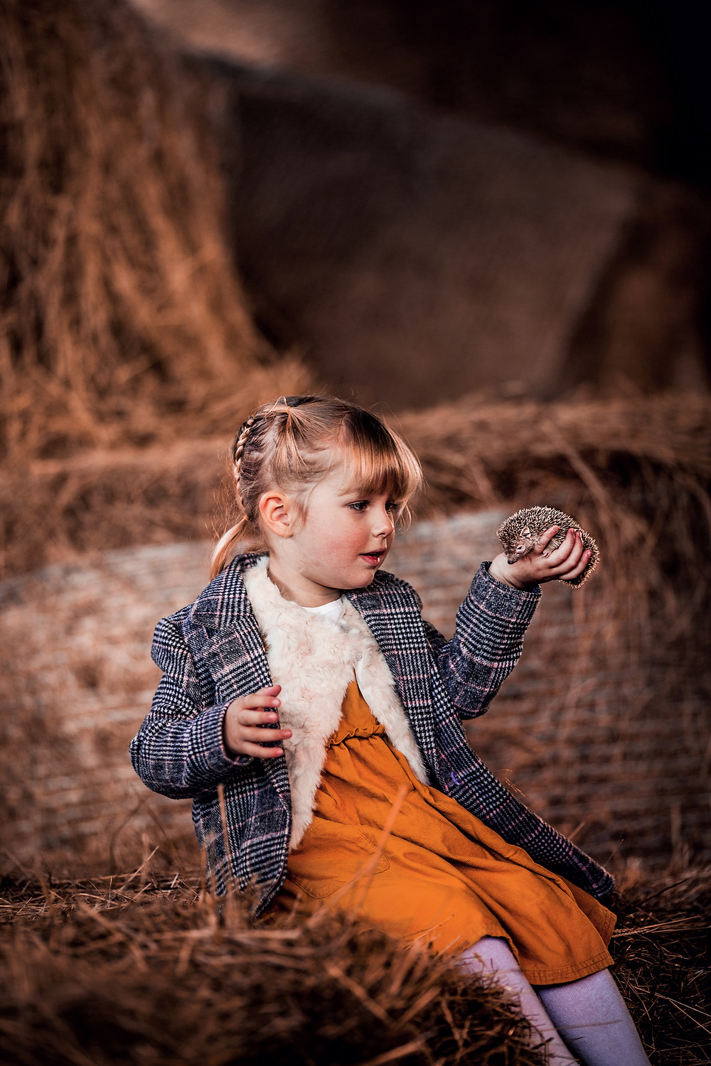 sugar moon magical portrait photography child family animal tenrec hedgehog barn