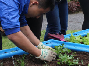 Gardening at Schools in BC