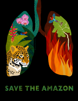 amazon poster fb personal page.png
