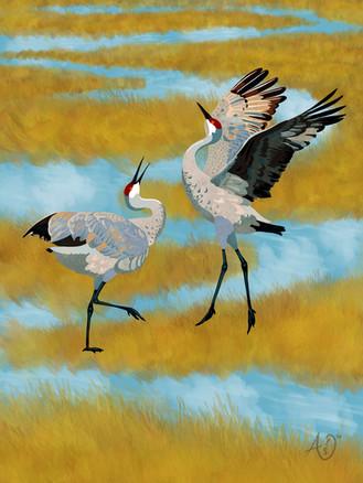 04 april sandhill crane dance calendar.j