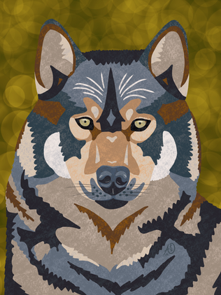 wolf illustration.png