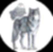 owlingwolf bio.png