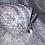 Thumbnail: Trousse double zip fleurs des champs lin rose