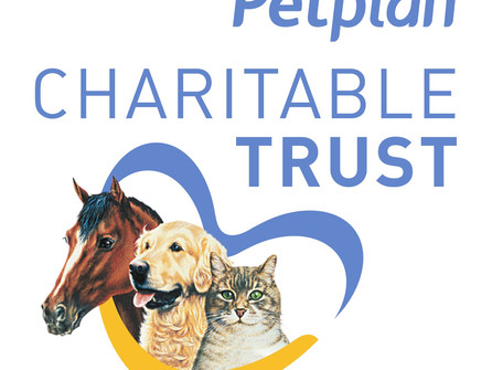 P.A.W.S receive grant from PetPlan
