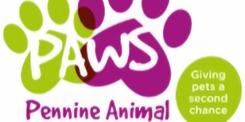 PAWS Fun Dog Show