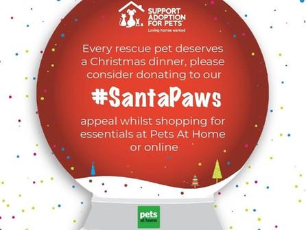 Every rescue pet deserves a Christmas dinner!