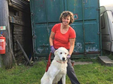 Yorkshire Hero Day's Nominee - Sue's Tireless Work as Head of Animal Charity