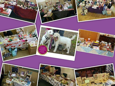PAWS XMAS Fete Raises Over £1000 for Animals in Need Over the Holiday Period