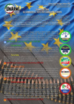 Elezioni Europee F.jpg